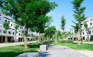 Khuôn viên cảnh quan Cây xanh Khu đô thị mới Phú Mỹ
