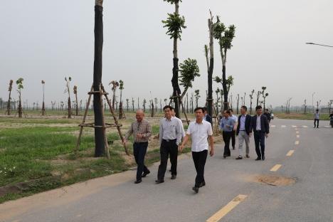 Đẩy nhanh hoàn thiện HTKT và các dự án thành phần tại Khu đô thị mới Thanh Lâm - Đại Thịnh 2